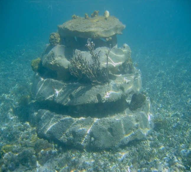 reef-ball-layer