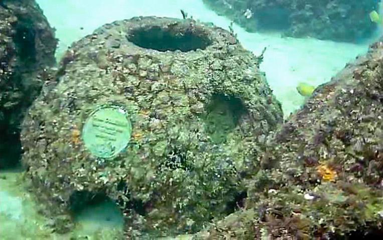 Eternal-Reefs-7-11-2011_023-11
